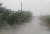 Thiệt hại hàng chục tỉ đồng vì bão số 8