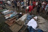 Bão Bopha tàn phá Philippines: Thiệt hại nặng do chủ quan