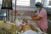Chết dồn dập vì cúm A/H1N1