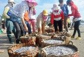 Nghề nước mắm ngắc ngoải vì thương lái Trung Quốc