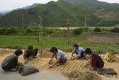 Triều Tiên: Khó khăn bủa vây người dân