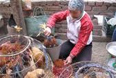 Kinh phí phòng chống cúm A/H7N9: Tự lo!