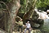 Lại xẻ vườn quốc gia làm thủy điện