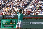 Hạ gục Djokovic, Del Potro vào chung kết với Nadal