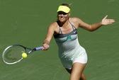 """""""Búp bê"""" Sharapova vất vả vào bán kết"""
