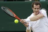 Murray rút lui khỏi Giải Pháp mở rộng vì chấn thương