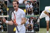 """Đánh bại """"hiện tượng"""" Janowicz, Murray chờ Djokovic ở chung kết"""