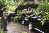 Hà Nội: Cúp điện, cây xanh đổ la liệt, 1 người chết