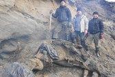 Bé trai phát hiện xác voi ma mút 30.0000 năm tuổi