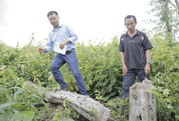 """Toàn cảnh """"xì-căng-đan phá rừng"""" của VTV24"""