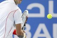 Hạ David Ferrer, Djokovic lần thứ ba đăng quang