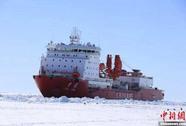 Giải cứu tàu Nga, tàu phá băng Trung Quốc bị mắc kẹt