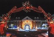 Người thắp 6 triệu ngọn đèn Giáng Sinh bị bắn chết