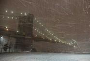 """Mỹ: New York hứng mưa """"dao găm"""""""