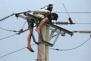 Trèo cột điện bắt ong, bị điện giật chết cháy đen