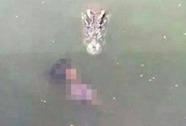 Nhảy xuống hồ cá sấu tự tử
