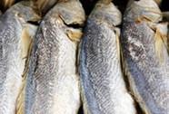 Món ngon từ cá sửu An Giang