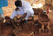 Hoảng hồn phát hiện 9 bộ xương trong vườn nhà