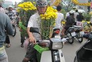 Hoa, cây cảnh đại hạ giá