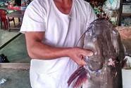 """Đắk Lắk: Câu được cá lăng """"khủng"""" trên sông"""