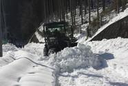 """Nhật Bản: """"Bà chúa tuyết"""" đoạt mạng 23 người"""