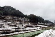 Mèo Vạc, Đồng Văn xuất hiện tuyết rơi
