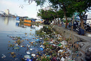 Sông ngập rác