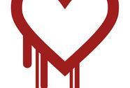 """An ninh mạng """"chảy máu"""""""