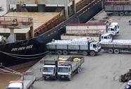 Vận tải hàng hóa: Đường bộ thống lĩnh (*): Thay đổi để lớn mạnh