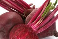 Chế tạo máu từ protein thực vật