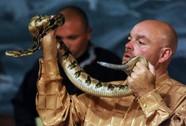 Thầy trị rắn bị rắn đoạt mạng