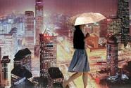 """Trung Quốc công bố """"quan"""" phạm kỷ luật"""