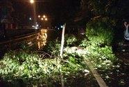 Bão đổ bộ Quảng Ninh, thiệt hại không đáng kể