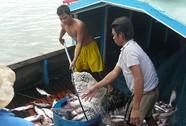 Mỹ tăng mức thuế chống bán phá giá cá tra