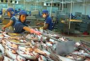Cá da trơn kẹt đường vào Mỹ