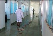 Bệnh viện mới xây đã hỏng