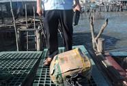 Bắt vụ vận chuyển hơn 50 kg thuốc nổ
