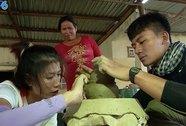 Kim Dung - Long Điền chia tay Cuộc đua kỳ thú 2014