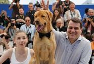 Phim về chó hoang của Hungary đoạt giải triển vọng tại Cannes 2014