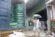 Xuất khẩu gạo khó dự báo