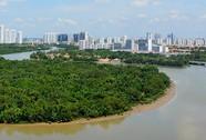Đô thị của những dòng sông
