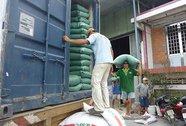 Thị trường gạo thế giới đang cạnh tranh gay gắt