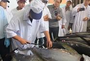 Cá ngừ đại dương Việt Nam sang Nhật