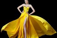Đề nghị hủy lệnh cấm Hoa hậu Diễm Hương biểu diễn