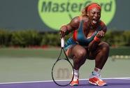 Serena chật vật vào vòng 4, Wawrinka ngược dòng trận ra quân