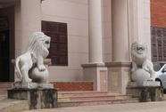 Nhiều công sở ở Nghệ An dùng tượng sư tử đá lạ trang trí