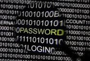 Tin tặc Nga đánh cắp 1,6 tỉ tài khoản internet