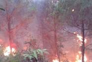 Thôn trưởng tử vong vì kiệt sức khi chữa cháy rừng