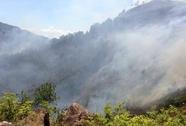 Nắng nóng trên 40 độ, 70 ha rừng bị thiêu rụi trong 1 ngày