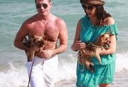 Dẫn chó dạo biển, Simon Cowell gặp rắc rối